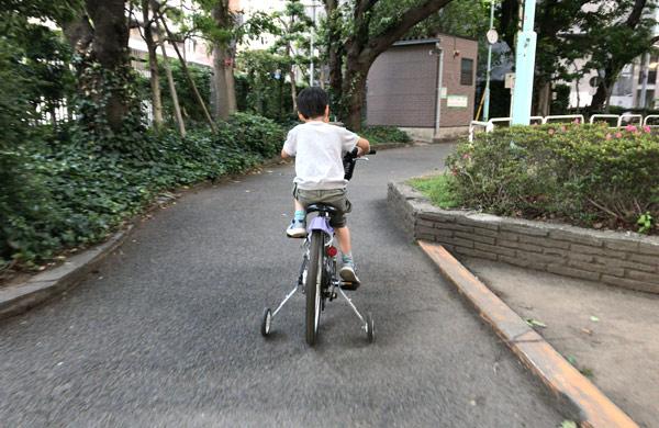 training-wheels_11
