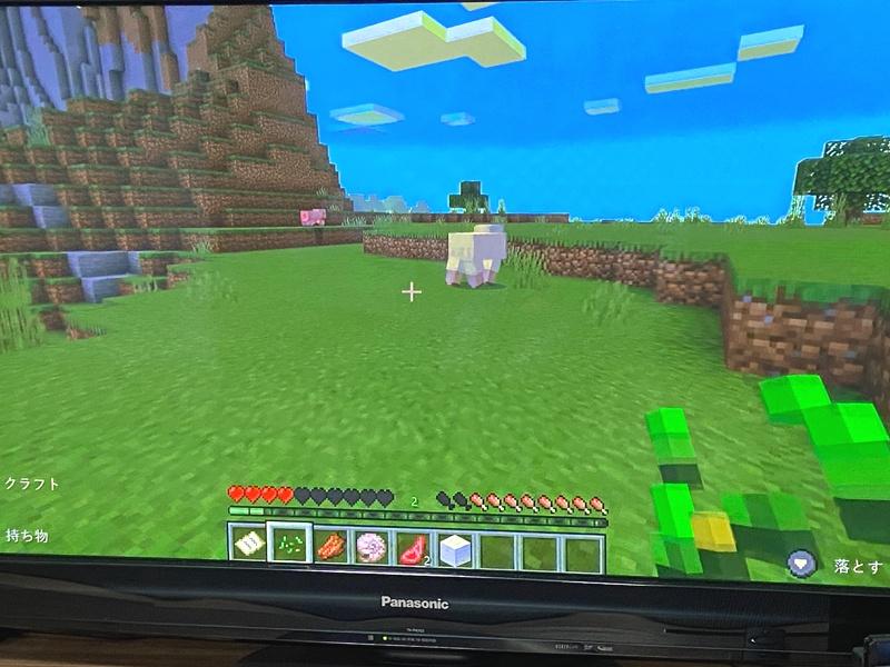 マインクラフト(Nintendo Switch版)で兄弟二人が画面分割(左右)で遊ぶ方法