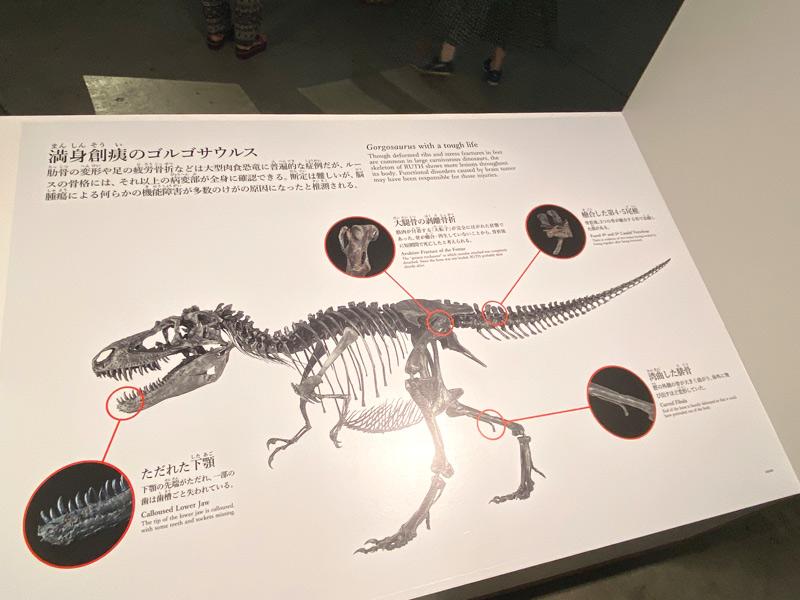 【恐竜科学博2021】感想と混雑状況~子連れ横浜ぶらり日帰りで満喫~